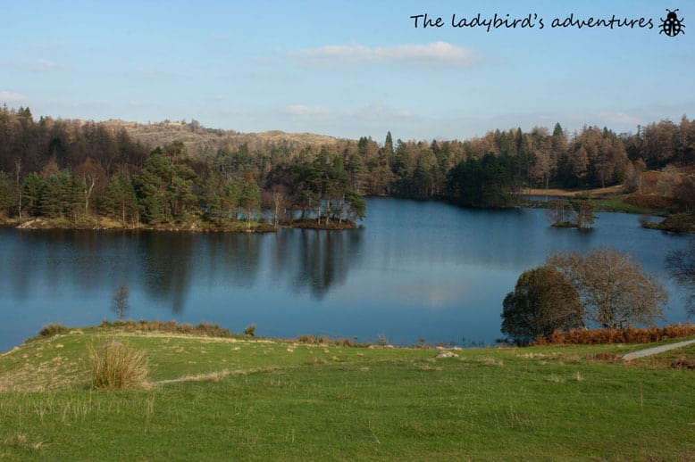 Tarn Hows, The lake district