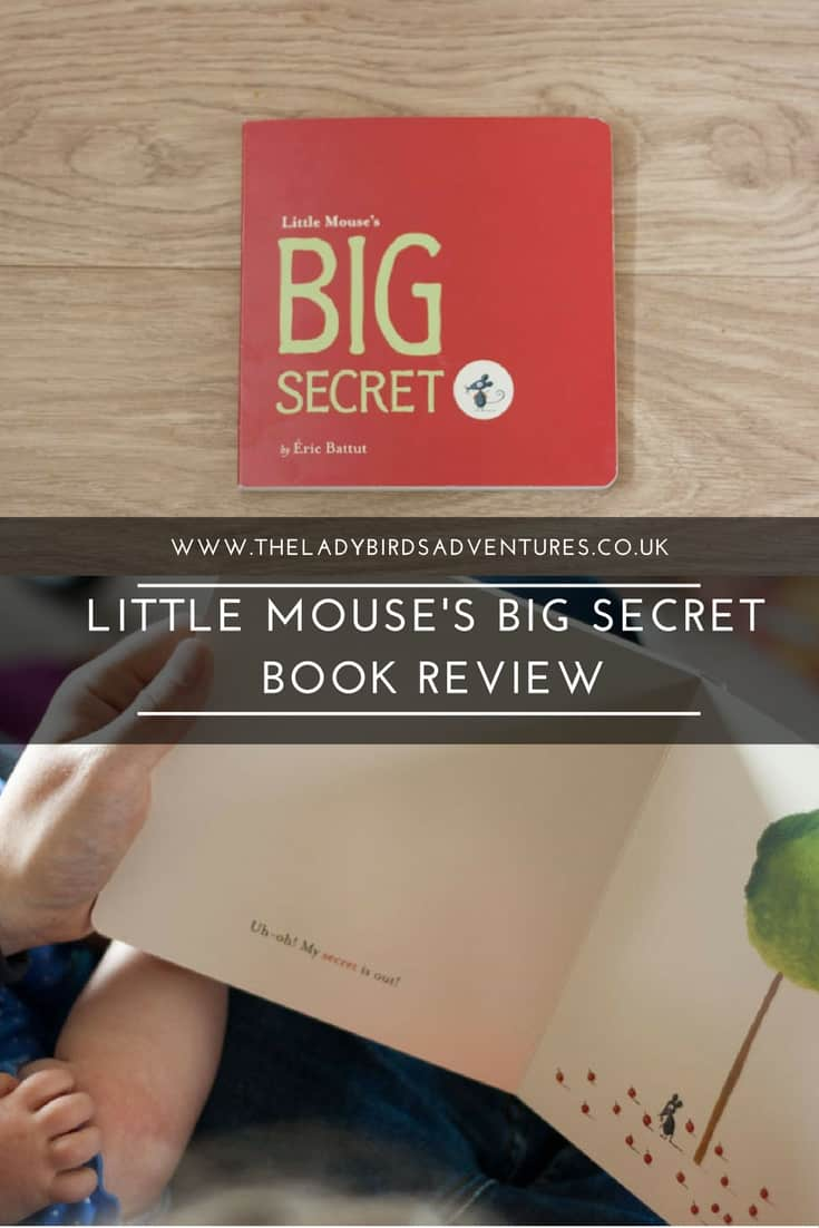 Little Mouse's Big Secret Book Review