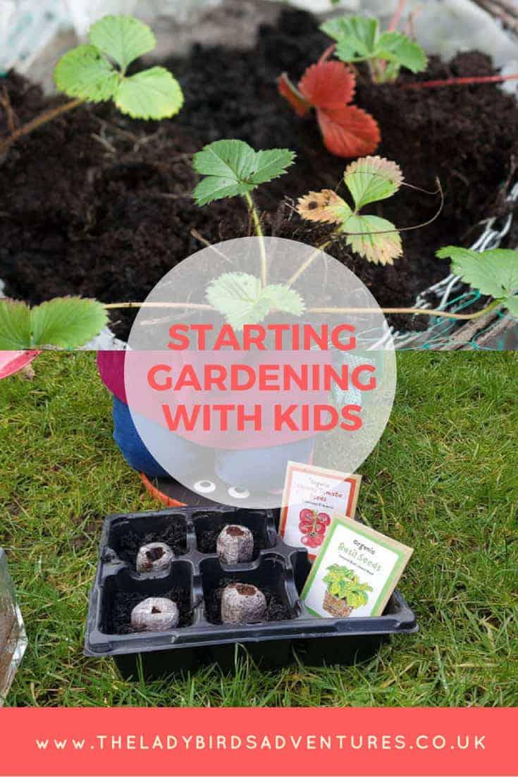 Starting gardening with kids