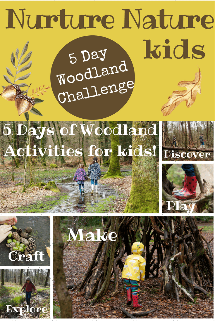 5 day woodland challenge for families