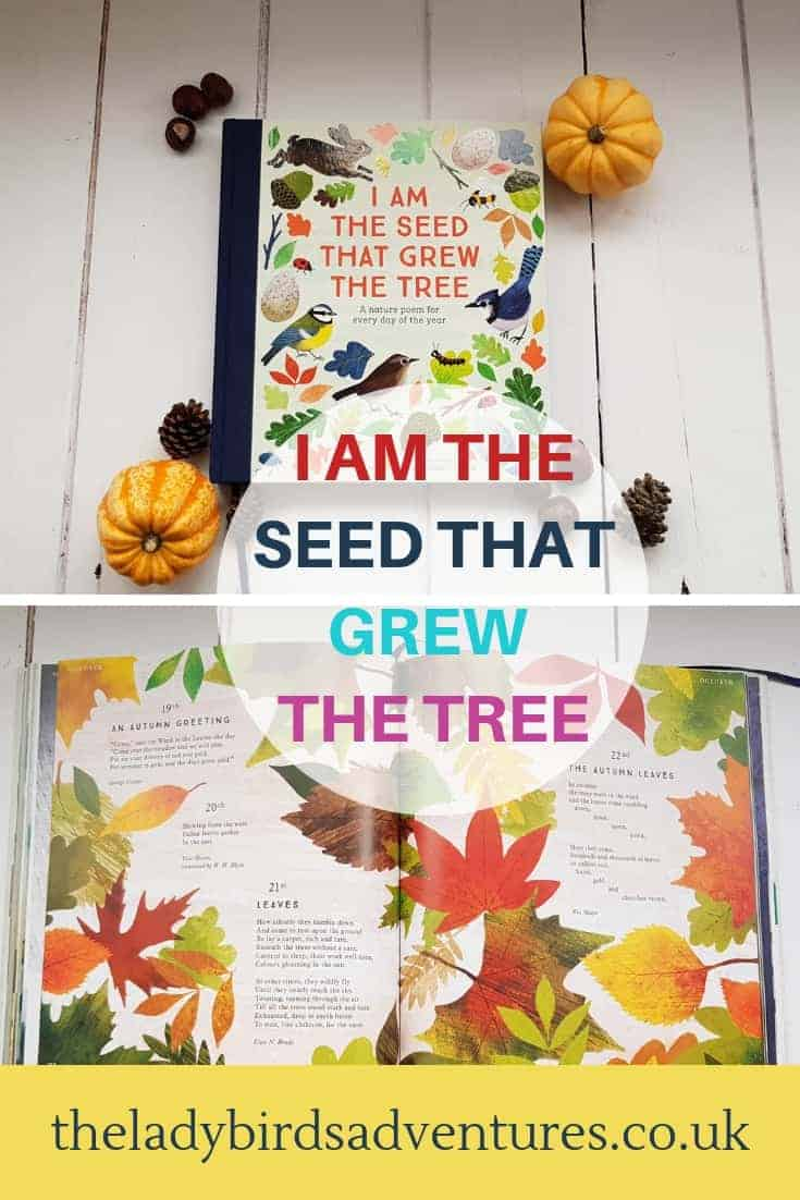 i am the seed that grew the tree review