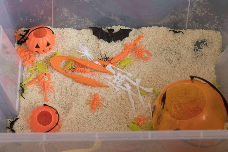 Halloween sensory bin for toddlers
