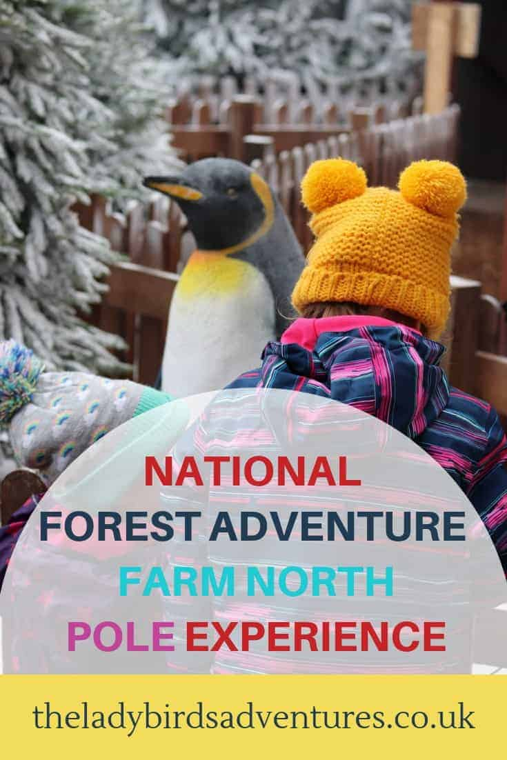 National forest adventure farm north pole experience review