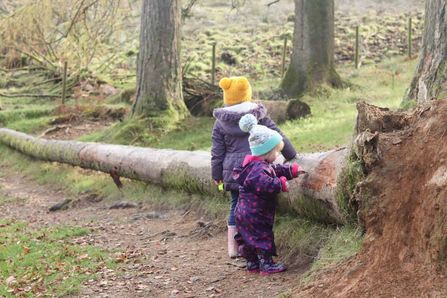 Autumn breaks in the lake district for families